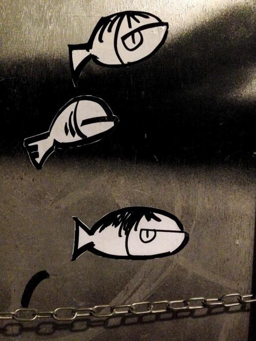 Pececillos urbanos (Raval2015)